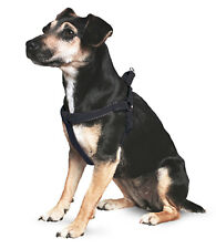 Ancol Reflective Padded Harness Small / Black