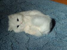 KITTY CAT kitten plush rabbit fur FURRY ANIMAL REPLICA c357wht FREE SHIPPING USA