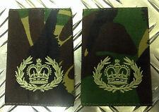 Genuine British Army Woodland Camouflage RQMS QMSI Rank Slide / Epaulettes - NEW
