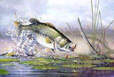 "Scott Zoellick /"" Beginners Luck/"" fishing  Art Print  SN with Certificate"