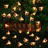 30 LED Solar Powered String Honey Bee Shape Warm Light Garden Decor Waterproof