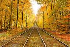 STUNNING AUTUMN RAILWAY TRACKS CANVAS #348 QUALITY FRAMED PICTURE WALL ART