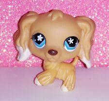 authentic LPS 748 EPAGNEUL littlest petshop chien DOG spaniel cocker tan HASBRO
