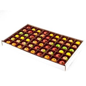 Bergen Marzipan 54 Piece Assorted Fruit Box Bulk Tray Net Weight 25 oz Gift