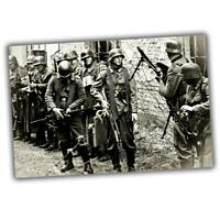 War Photo Wehrmacht soldiers in Stalingrad, the Eastern Front WW2 4x6 V