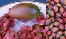 ukrainische Tomate purpur Samen Tomatensamen