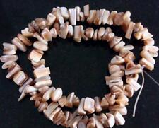 Gray lip baroque mother of pearl abalone shell nugget beads 16 Inch strand bs324
