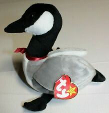 Ty Beanie Babies LOOSY Canada Goose 1998 Retired Plush Toy