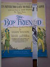 Nunca es demasiado tarde para enamorarse (Sandy Wilson) el niño amigo