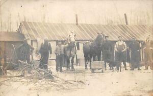 ALPENA Michigan US USA RPPC postcard County logging lumber camp horse team