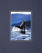 ART WOLFE HUMPBACK whale poster stampa d'arte immagine 50x40cm-SPEDIZIONE GRATUITA