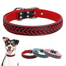 Braided Leather Dog Collar for Medium and Large Dogs for Walking Hiking Blue Red