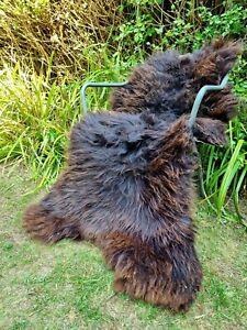 XXXXL Huge British Jacobs Brown Sheepskin Rug - 145cm by 90cm A++ (2712)