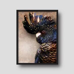Black Cockatoo Wall Art, Poster Size, A1, 594mm x 841mm