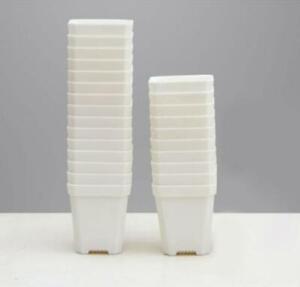 50pcs Thick Solid Premium Quality White Plastic Pot 7*7cm Seeding Propagation