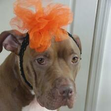 Black Headband with Orange Flower for Dogs -New-  FREE SHIPPING