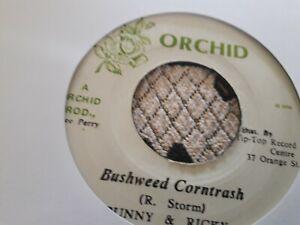 "Bunny & Ricky , Bushweed Corntrash , 7 "" Orchid"