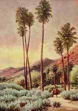 A4 Foto Bagg Henry H 1852 1928 en Sunset autopistas 1921 Palm Canyon California P
