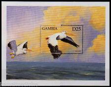 Gambia 1999 MNH SS, Pelicans, Water Birds (U2n)