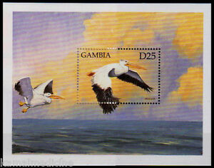 Gambia 1999 MNH SS, Pelicans, Water Birds