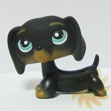 Littlest Pet Shop Animal LPS Loose Toy #325 Chien Teckel Black Dachshund Dog BB