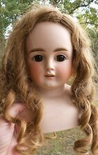 GORGEOUS! Antique LARGE Turned SHOULDER HEAD Bisque DOLL marked 1133 Germany