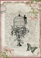 Shabby Chic Wall Plaque Art Vintage Birdcage and Butterfly Roses A3