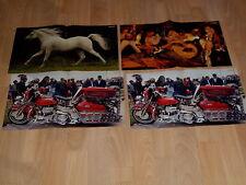 Bravo Posters:Pferd+Krokus+2x Harley Davidson