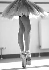 BALLET BALLERINA POINTED SHOES Photo Poster Print A3 260GSM