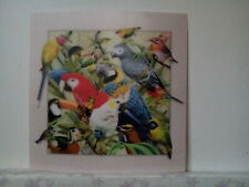 bird parrot panorama 5D Lenticular  Holographic Stereoscopic Picture Wall Art