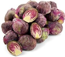 Seeds Brussels Sprouts Rosella Vegetable Organic Heirloom Russian Ukraine
