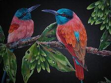 Carmine Bee-eater  bird wildlife painting
