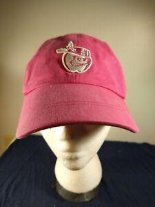 Fort Wayne TinCaps Baseball Cap Minor League Baseball Adjustable Hat