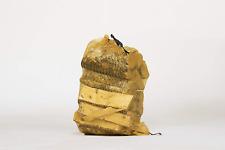 Small 20cm Silver Birch Kiln Dried Hardwood Logs Net. - 10% Moisture, Perfect &