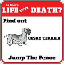 Crossing Sign Cesky Terrier Dog Life After Death Jump Fence Cross Xing Metal