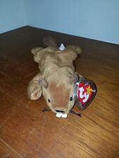 Ty Beanie Baby Bucky (Style #4016) with Errors! Retired!