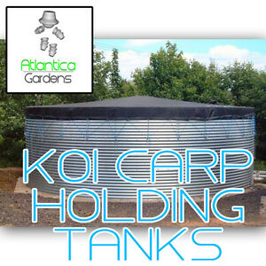 3.66m Koi Holding Tank: Large Steel Pond, EPDM Rubber Liner   Fish Carp Breeding