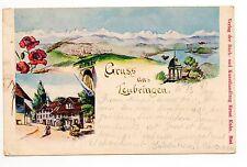 SUISSE SWITZERLAND canton BERNE Bern Gruss aus LEUBRINGEN evilard CPA précurseur