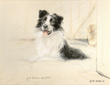 BORDER COLLIE WORKING SHEEPDOG DOG ART LIMITED EDITION PRINT -  # 849/850