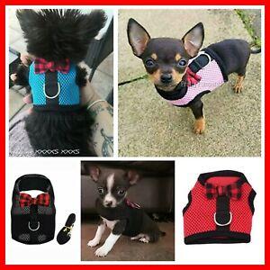 XXXXS XXXS XXS XS SMALL Puppy Dog Chihuahua Teacup Kitten Cat Harness Coat
