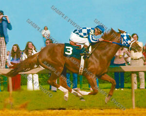 SECRETARIAT 1973 PREAKNESS STAKES WINNER RON TURCOTTE UP 8X10 PHOTO