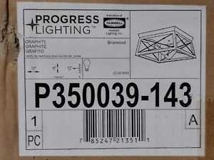 Progress Lighting Briarwood 12 in. 2-Light Graphite Flush Mount
