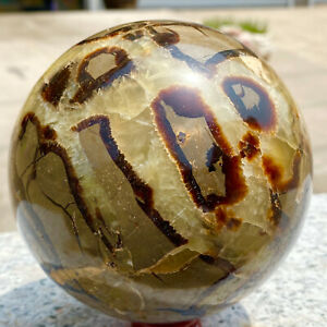 4.69LB   Natural septarian dragon stone crystal sphere mineral ball healing