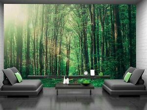 Natural Green Forest   Wall Mural Photo Wallpaper GIANT WALL DECOR Free Glue