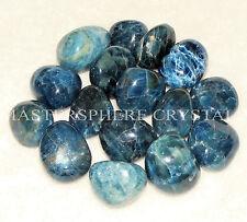 5 x Apatite Blue Tumblestones 17mm-20mm A Grade Crystal Gemstone Wholesale Bulk