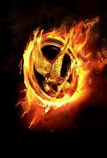 NEW LARGE HUNGER GAMES CATCHING FIRE LOGO MOVIE PICTURE ART PRINT PREMIUM POSTER