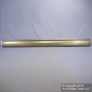 New GM OEM Graystone Front Right Door Guard Side Moulding Trim Panel Strip