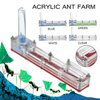 Long Acrylic Ant Farm With Water Deposit Educational Nest Formicarium Live House