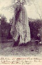 CPA 61 Normandie ORNE Le Pin au Haras Argentan SILLY-EN- GOUFFERN Menhir 1903