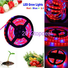 5M LED 5050 Strip Light Red Blue 5:1 For Plant Grow Flower Strip Lamp 12V